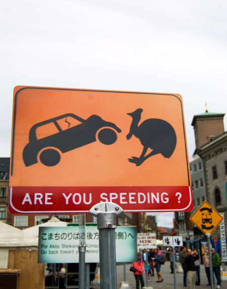 are-you-speeding