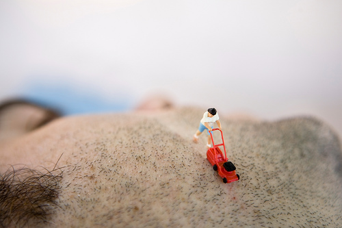 tiny-plastic-life-people6