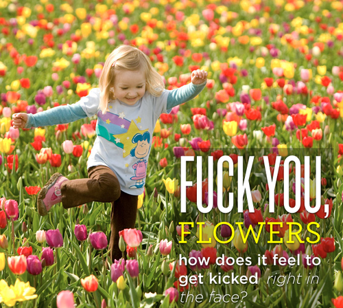 fuck-you-flowers-how-does-it-feel