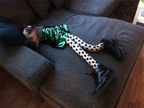 Chat portant collants - cats wearing tights